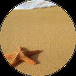 cuentos en portugues - estrelas do mar